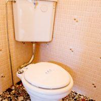 弘前市のアパート・賃貸 トミノスクエア トイレ